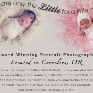 Artistic Bliss Portraits – Portrait Session Collection