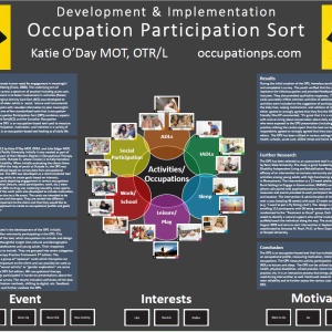 Visual Activity Sort (formerly Occupation Participation Sort) Assessment Kit